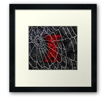 Black Widow Spice Latte Framed Print