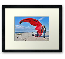 Battle with a kite Framed Print