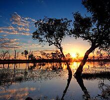 Billabong Sunset by Jodie Williams