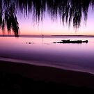 Moreton Bay Sunrise by Kym Howard