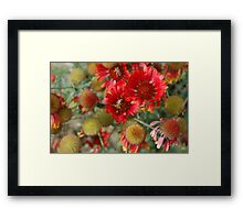 """""""Busy Bees One"""" Framed Print"""
