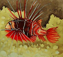 red fish by Ciobanu Adrian