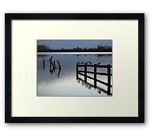 Evening roost Framed Print