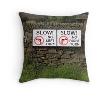 Losing my direction Throw Pillow