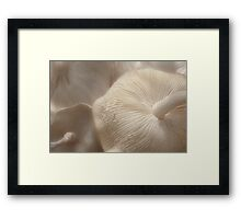 Of Parasols and Party Dresses Framed Print