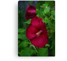 Flame Thrower Canvas Print