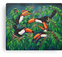 """Toucan Tea"" Canvas Print"