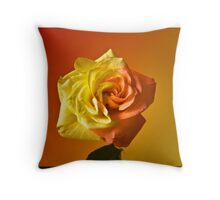 Two Tone Rose Throw Pillow