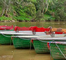 Boats for Hire by Barbara  Glover
