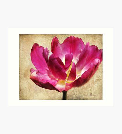 Textured Tulip Art Print