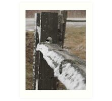 Snow Fence Art Print