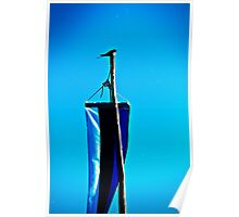 Swallow and the Flag Pole. Poster