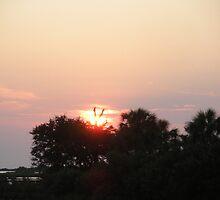 Cedar Key Sunrise by rowz10