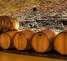 Wine casks Domane Wachau by Sylvain Dumas