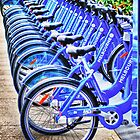 Bikes For Hire by Kris Montgomery