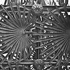 Palm Leaf Gate - Park Güell by Tim Topping