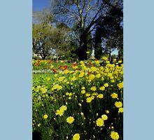 Wonderful World of Spring....Toowoomba ..Australia Unisex T-Shirt