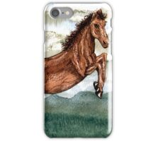 Cloud Burst Over Jeannie Horse iPhone Case/Skin