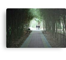 Bamboo alley Metal Print