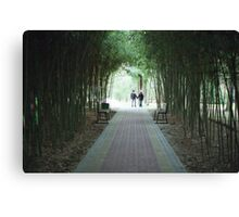 Bamboo alley Canvas Print