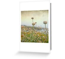 At the sea's edge, so delicate Greeting Card