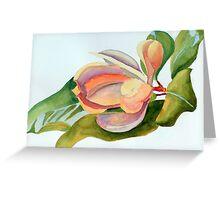 Magnolia 11 Greeting Card