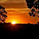 Evening Blaze by Lozzar Landscape