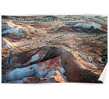 Dawn Flight: Painted Hills Poster