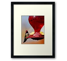 Who's Watching Who? Framed Print