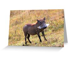 Something smells funny Greeting Card