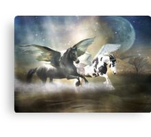 Change in Mood Canvas Print
