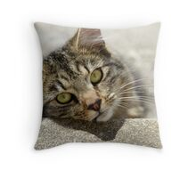 Tinto Throw Pillow