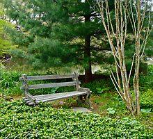 The Forgotten Corner of the Garden by MotherNature