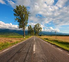 Road to Fogaras by zumi