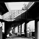 Shadows Beneath the Line by Joseph  Tillman