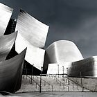 Walt Disney Concert Hall by Daisy Yeung
