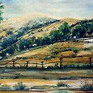 Outside Canberra, ACT, Australia 2 by Angela Gannicott