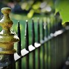 Wrought Iron Fence by Astrid Ewing Photography