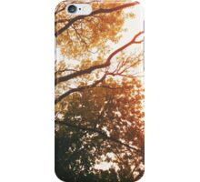 To the Treetops iPhone Case/Skin