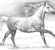 Dapple Grey Horse by Nicole Zeug