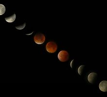 Blood Moon Lunar Eclipse Montage by David Alexander Elder
