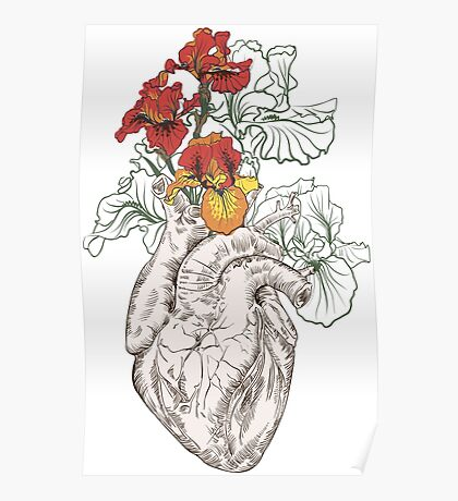 drawing Human heart with flowers Poster