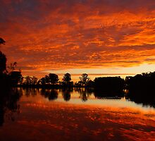 Fire in the Sky by Barbara  Glover