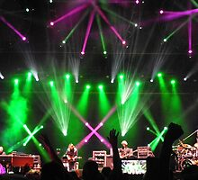 Phish Ball IX, 2011 by Cynthia Kiernan