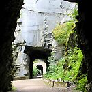 Othello Tunnels by Tracy Friesen