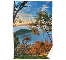 Kissing Point Morning Glow Poster