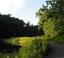 Beebe Lake Footpath by Mark  Reep