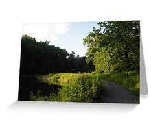 Beebe Lake Footpath Greeting Card
