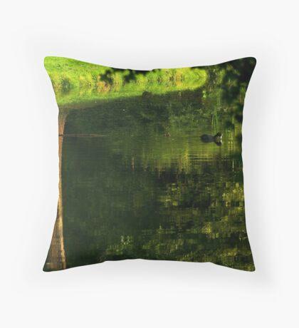 Coot's upside down water world Throw Pillow
