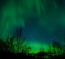 A Night of Lights from Space by peaceofthenorth